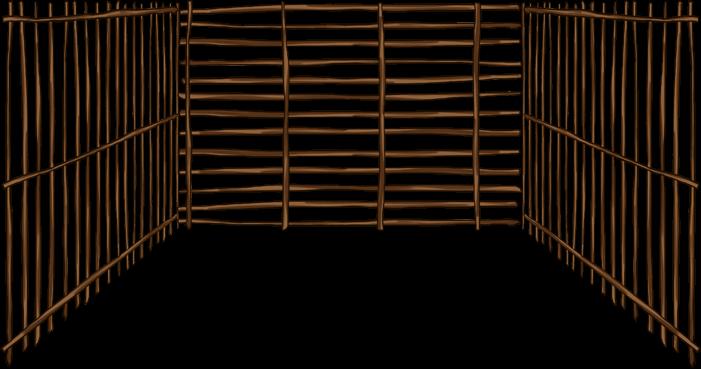 Tahití 4