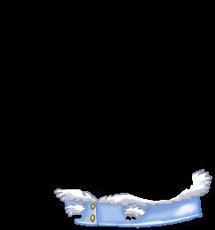Adopta un Ratón Yeti