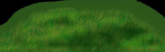 Picnic Grass