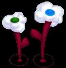 Flores de nubes
