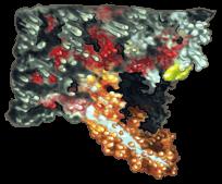 Roca de colores