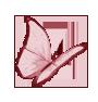 Mariposa de pascua