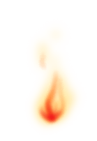 Llama demoníaca