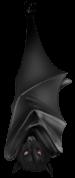 Murciélago vampiro