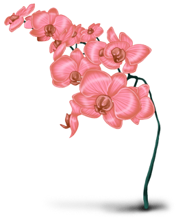 Flor de nieve