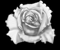 Hada de invierno rosa gigante