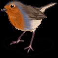 Pájaro de primavera