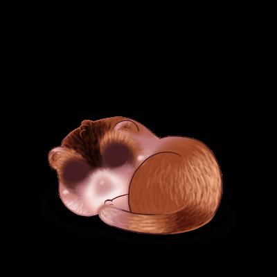 Adopta un Hurón Chocolate