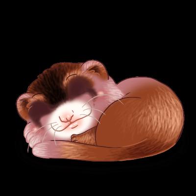 Adopta un Hurón Caramelo
