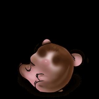 Adopta un Hámster Chocolate