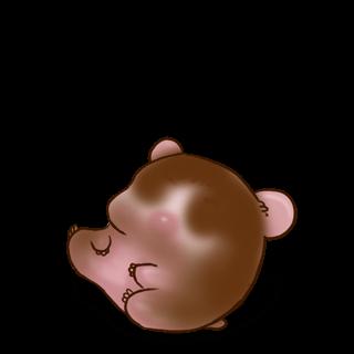Adopta un Hámster Chocolate con leche