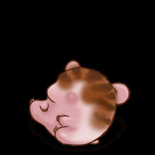 Adopta un Hámster Rayas marrones