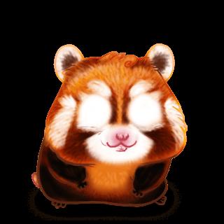 Adopta un Hámster Panda rojo