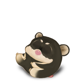 Adopta un Hámster Shiba Inu
