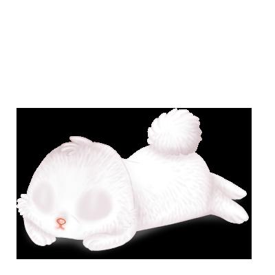 Adopta un Conejo Blanco