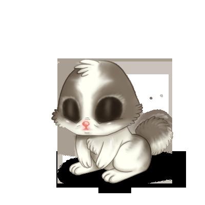Adopta un Conejo Blanco y gris