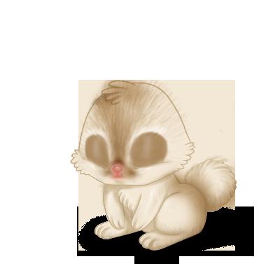 Adopta un Conejo Crema