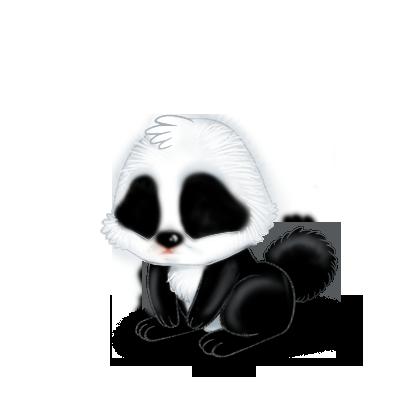 Adopta un Conejo Panda