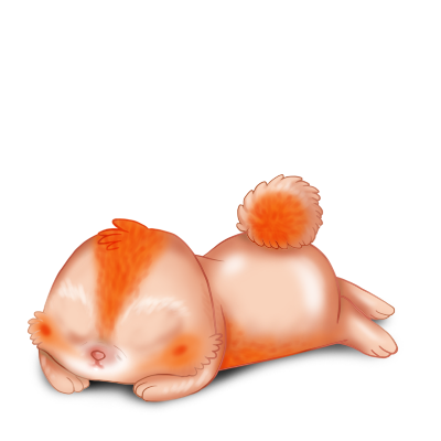 Adopta un Conejo Poiledecarotte