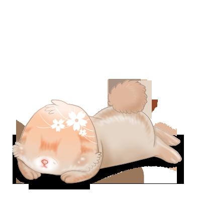 Adopta un Conejo Primavera