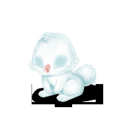 Adopta un Conejo Nieve