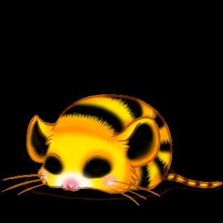 Adopta un Ratón Beemoov