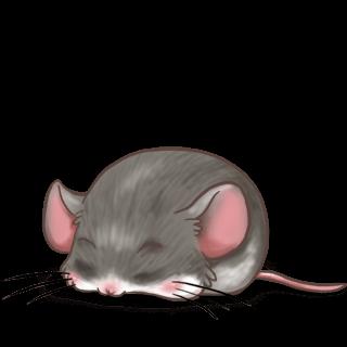 Ratón Casa