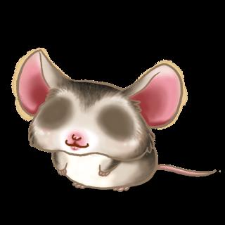 Adopta un Ratón Asiático