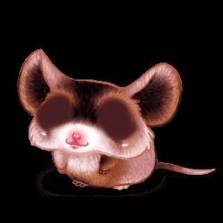 Adopta un Ratón Cromimi