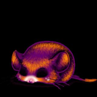 Adopta un Ratón Hallorora