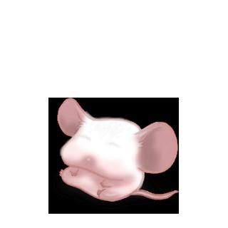 Adopta un Ratón Gris