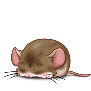 Adopta un Ratón Café
