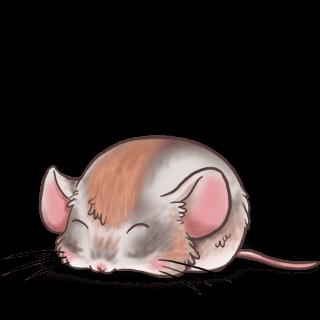 Adopta un Ratón León