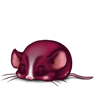 Adopta un Ratón Azul gris