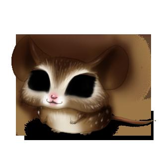 Adopta un Ratón Búho