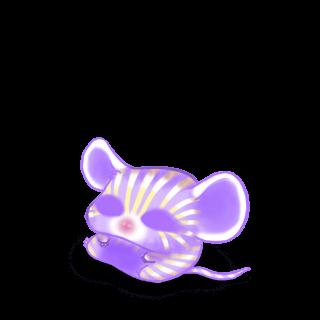 Irisor