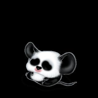 Adopta un Ratón Panda