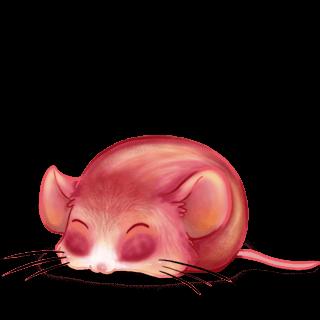 Adopta un Ratón Melocotón