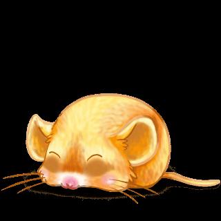 Adopta un Ratón Pollito