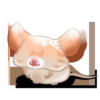 Adopta un Ratón Primavera