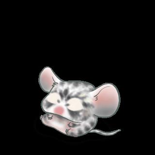 Adopta un Ratón Picante