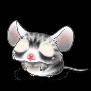 Adopta un Ratón Rascado