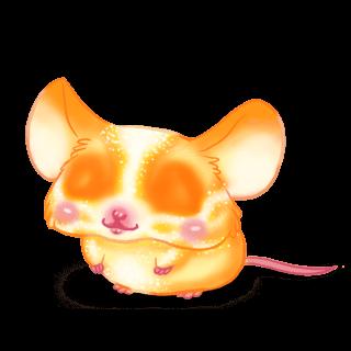 Adopta un Ratón Sol