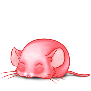 Adopta un Ratón Dulzura