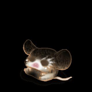 Adopta un Ratón Esmeralda