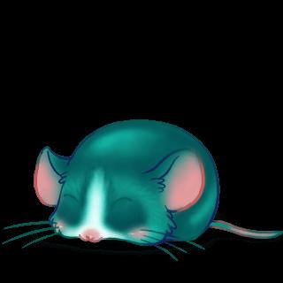 Adopta un Ratón Turquesa