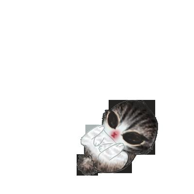 Adopta un Conejo Calabaza