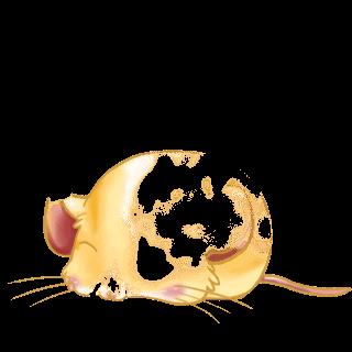 Adopta un Ratón Casa