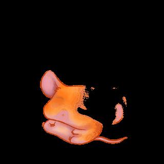 Souris Souris Citrouille