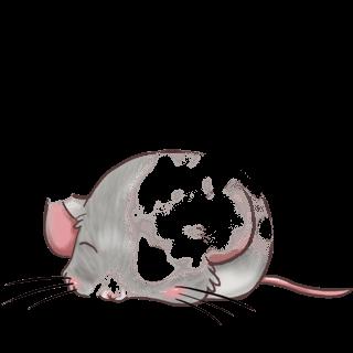 Adopta un Ratón Nieve